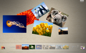 surface_collage_thumb_2E2840C1